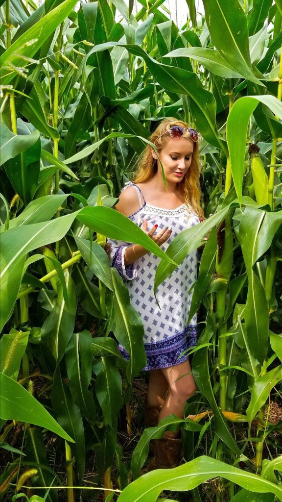 girl in white sundress with a small blue pattern and long curly blonde hair standing in a field of really tall corn stalks