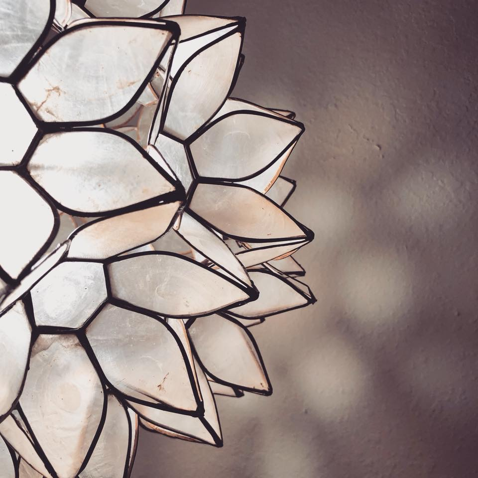 close up a lotus capiz shell chandelier