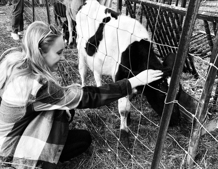 black and white photo of a blonde girl with long hair in a flannel shirt reaching through a fence to pet a small black and white cow
