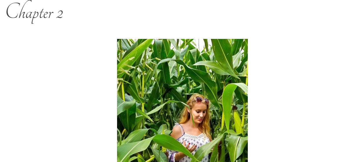 "Screen grab of blog title page: ""Chapter 2"" with a photo of a blonde girl standing in a cornfield."