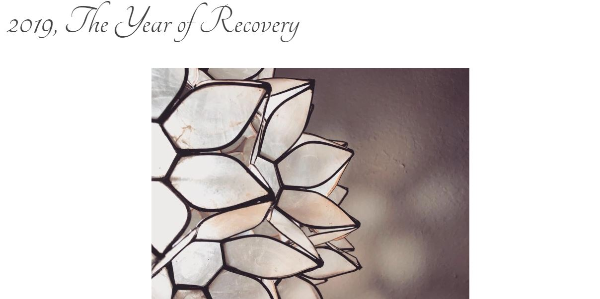 "Screen grab of blog title page: ""2019, The Year of Recovery"" with a photo of part of a lotus chandelier made with white shell like material."