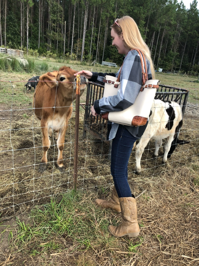 Girl petting a cow.