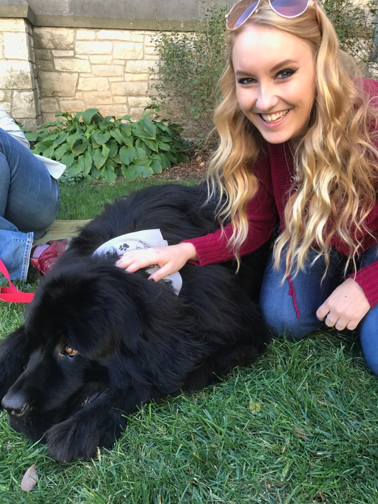 blonde girl petting a very large black dog on the ground.