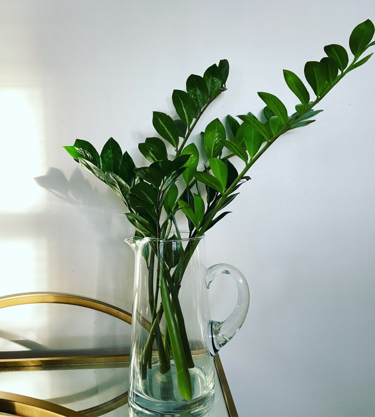 Decorative clear vase full of ZZ stems against a white wall on round gold bar cart